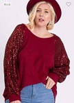 Burgundy Sparkle Sequin Sleeve Top
